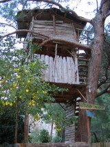 Olympos & Tree House