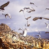Cappadocia Local Tours Package